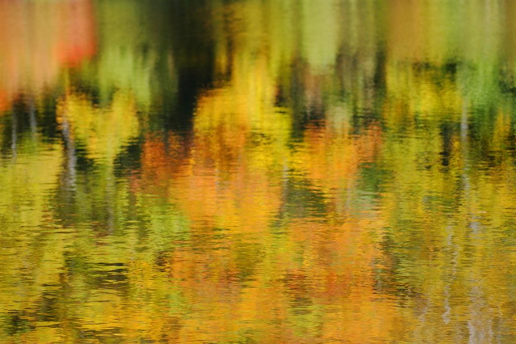 秋色に染まる湖面