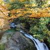 Waterfall Decoration
