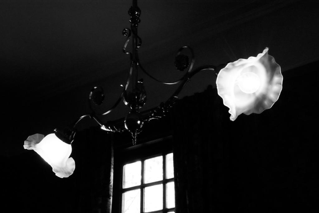 Elegance light