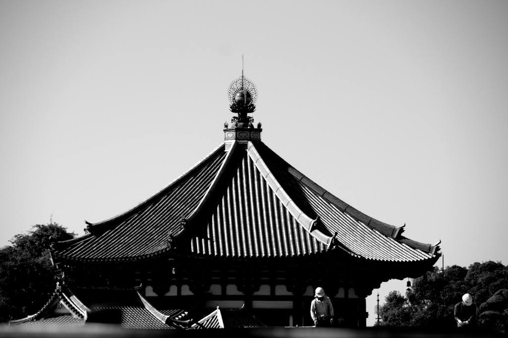 Color of Nara 29/30