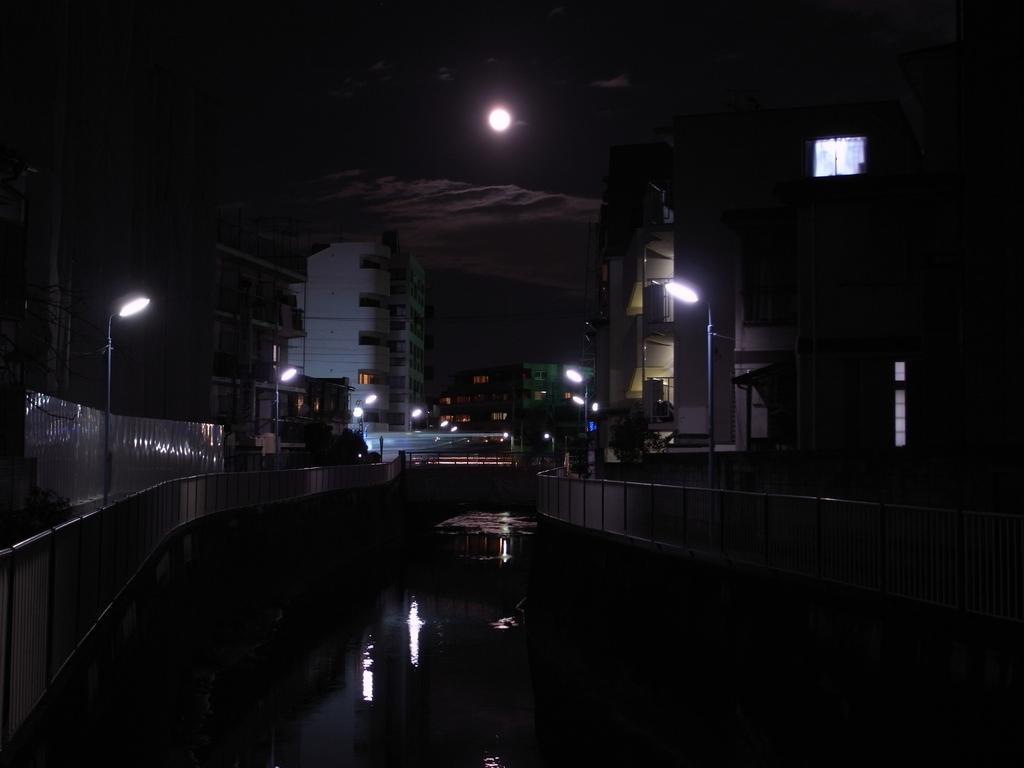 月の綺麗な晩に