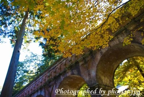 Autumn in Kyoto 2008 002