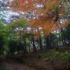 松島 扇谷