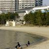 波打ち際で遊ぶ子供たち