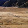 普达措国家公園