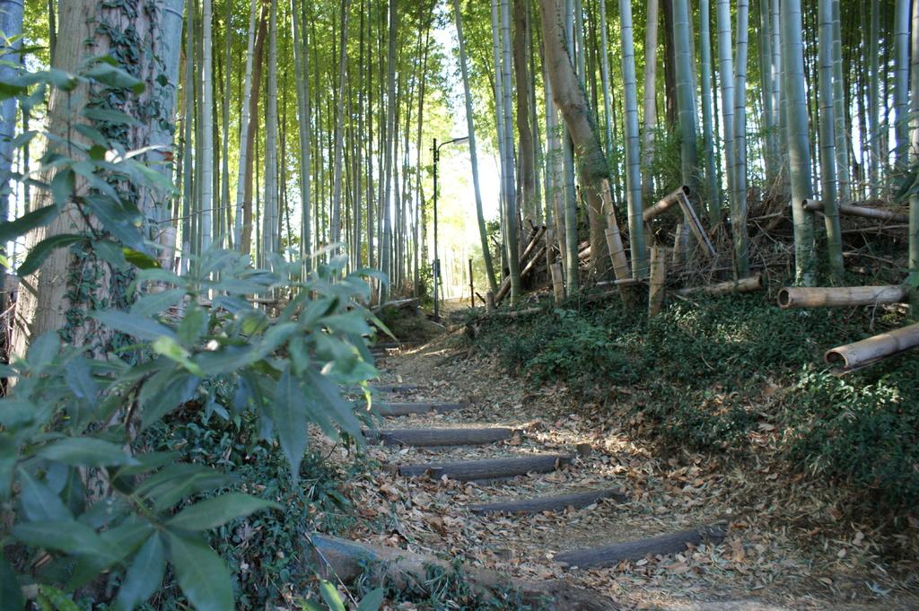 bumboo road