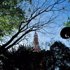 Jungle Tower