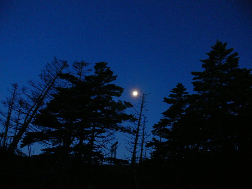 奥駆道・弥山夜明け前