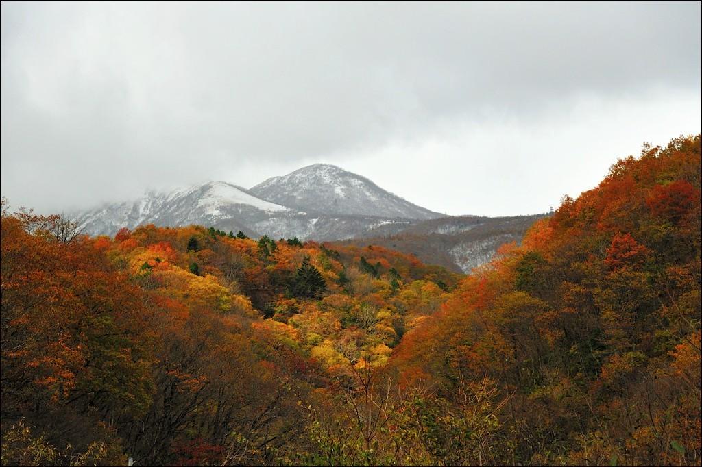 秋と冬の境目
