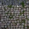 石畳との共生