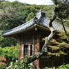 鎌倉・瑞泉寺1