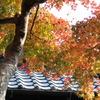 鎌倉のお屋敷で