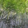 鎌倉・瑞泉寺2