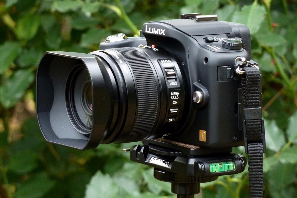 G1 + LEICA DG MACRO-ELMARIT 45mm/F2.8 AS