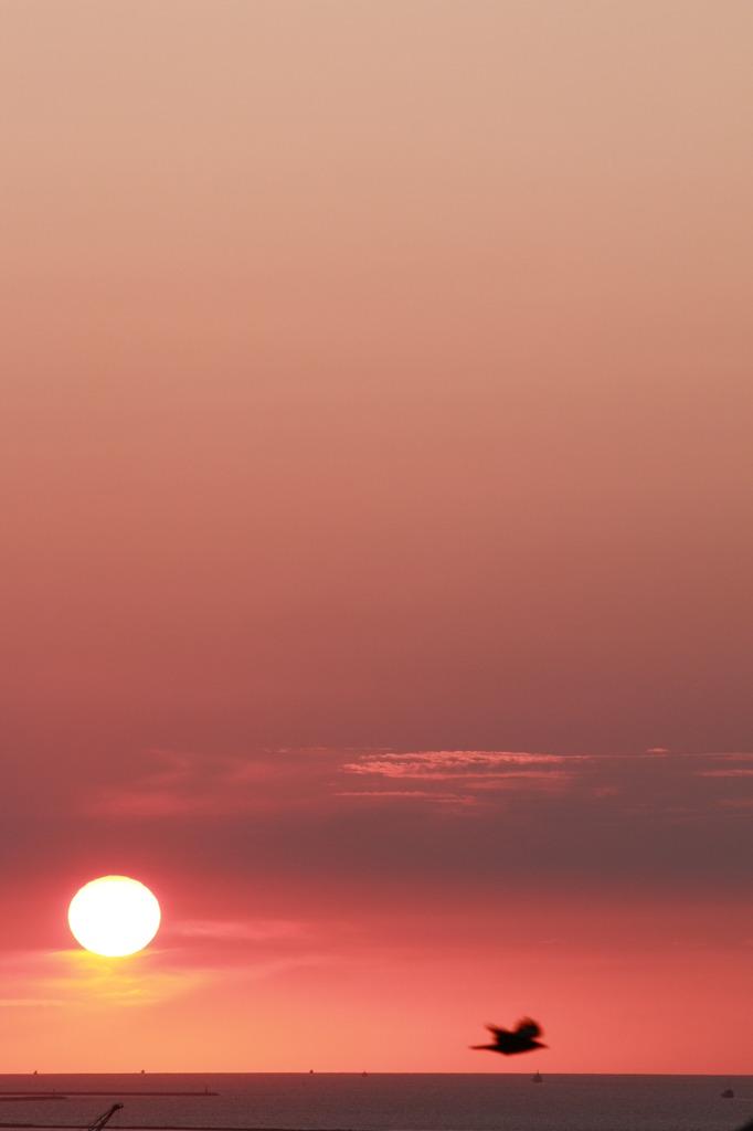 本州西端の落日