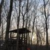 キャンプ場の朝2