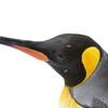 ペンギンのアップ