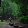 梅雨の走り