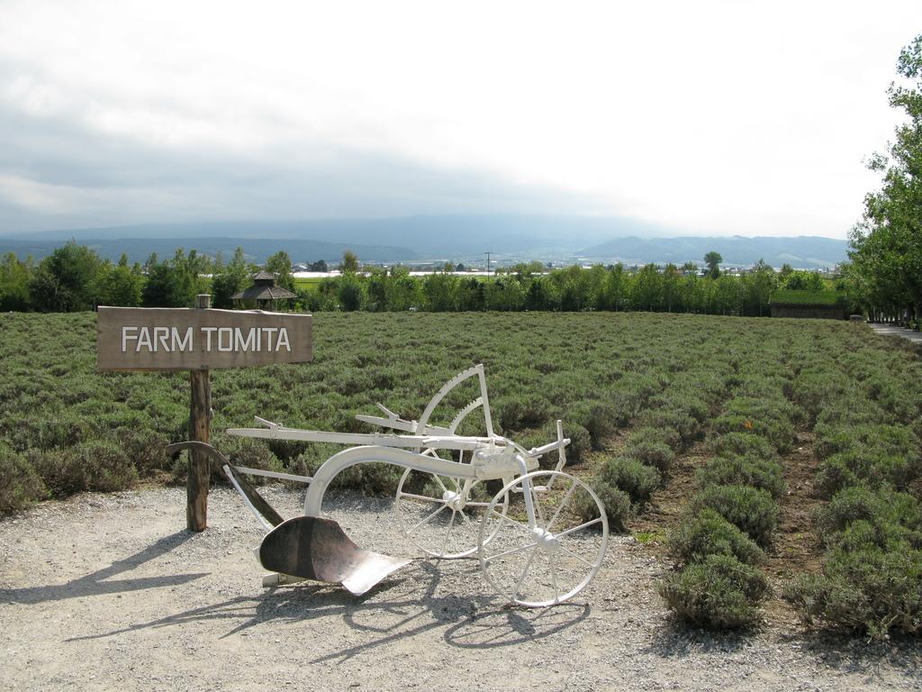2008年夏①