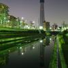 東京スカイツリー成長記録 2010.02.18 303m
