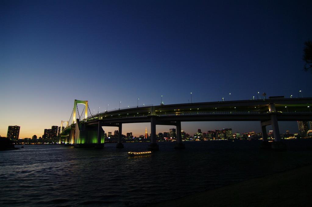 TWILIGHT BRIDGE