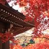鎌倉海蔵寺と紅葉