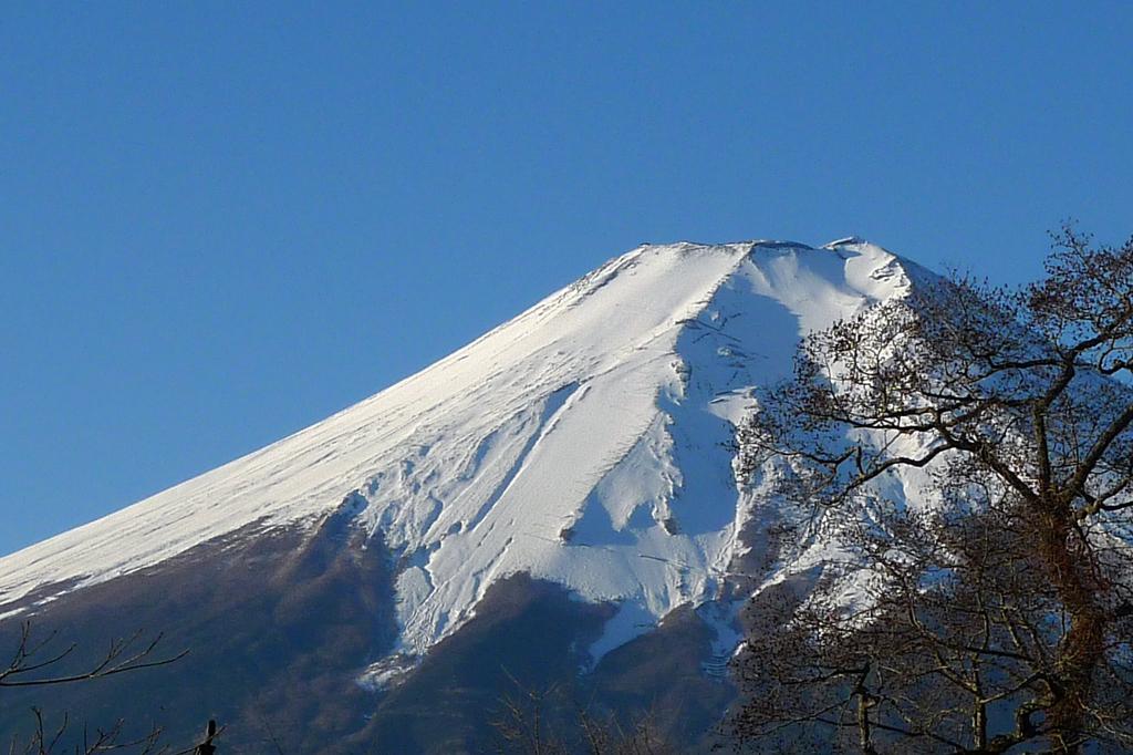 忍野八海より望む富士