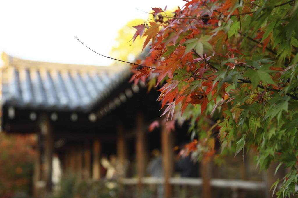 東福寺にて