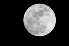 平成29年初満月