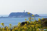 春の江ノ島