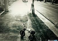 1975 『 置き去り 』