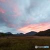 湿原の夜明け2