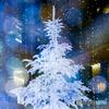 夢のクリスマスⅢ