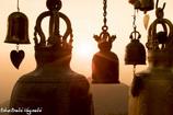ハートヶ丘の鐘が鳴る