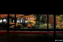 2016秋景色5(紅葉 大原 宝泉院1)