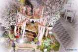 夜の桜garden
