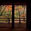 晩秋の光明禅寺Ⅰ