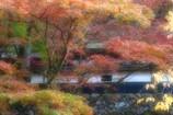 秋の横蔵寺 9