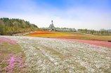 春色の高原 9
