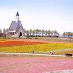 春色の高原 10