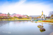 春の苑 Ⅱ