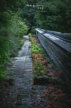 静寂の小路