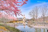 春の教会 Ⅱ