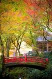 秋の横蔵寺 6