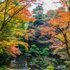 秋の殿が谷戸庭園