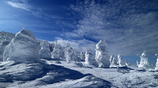W!nter ZAO !!! (Snow monster Ⅱ)