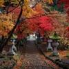 2015 清水寺(セイスイジ)の紅葉3