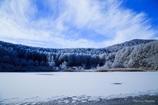 中牧湖の霧氷