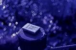 青の洞窟:光苔