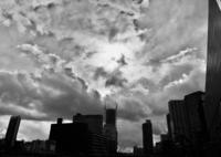 RICOH GXRで撮影した(モノクローム)の写真(画像)